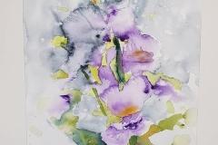 lirios flor