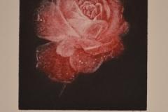 Y de la flor..la vida