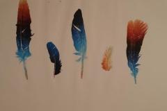 plumas 2